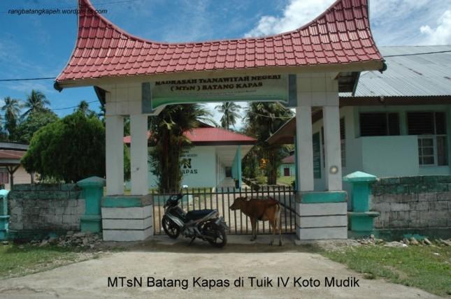 MTsN Batang Kapas1